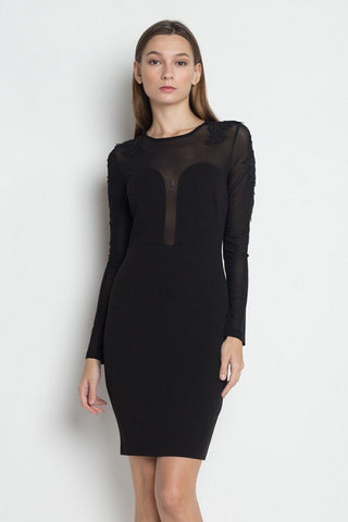 Long Sleeve Mesh Dress with Floral Embellishments