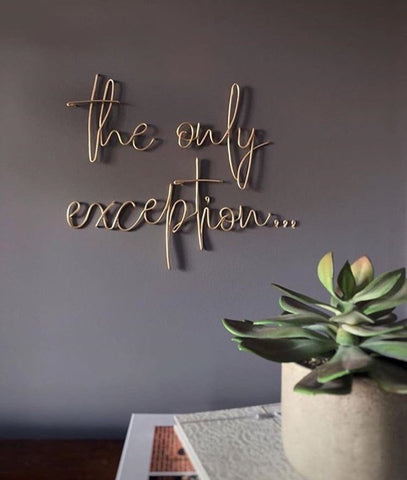 the only exception... - Wire wall art