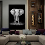 Safari Wall Art Collection
