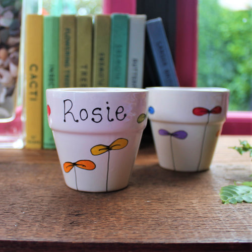 Rainbow seedlings planter personalised planter by Laura Lee Designs
