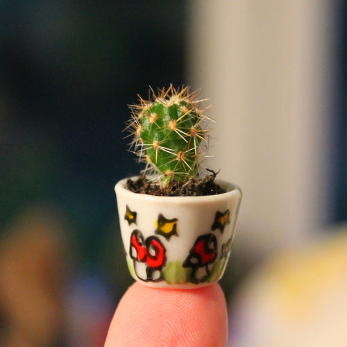 Miniature cactus planter hand painted in magic mushrooms by Laura Lee Designs