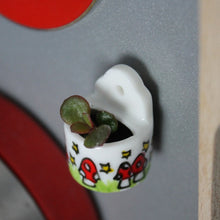 Load image into Gallery viewer, Magic Mushroom Miniature Succulent Planter - Live Plant Cutting - Magnetic Or Plain