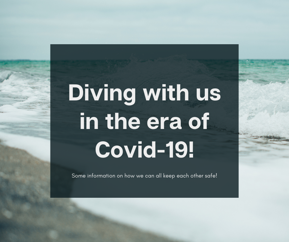 Diving with us in the era of covid-19 (updated 5th Jan 2021)