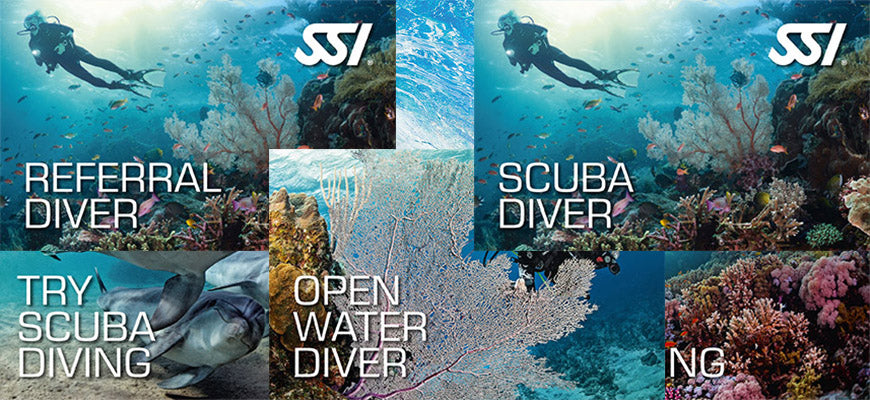 Why Learn to dive with Divemaster Scuba