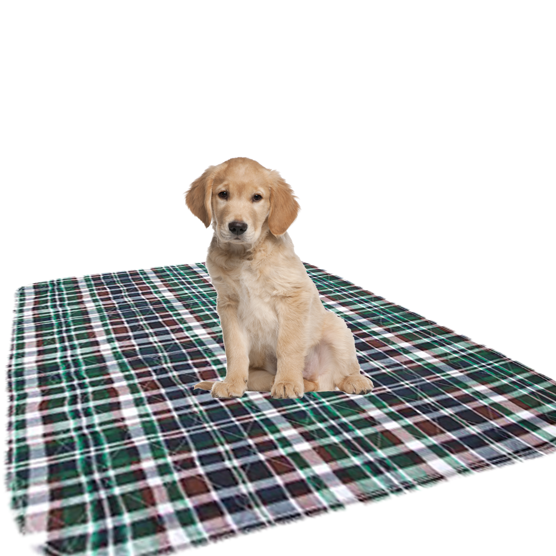 Underpads-Dry Defender Reusable Puppy Pad