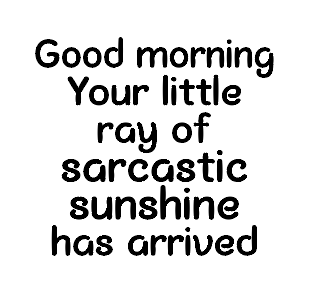 Sarcastic ray of sunshine quote mug vinyl