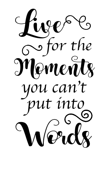 Live for the moments quote wine bottle vinyl