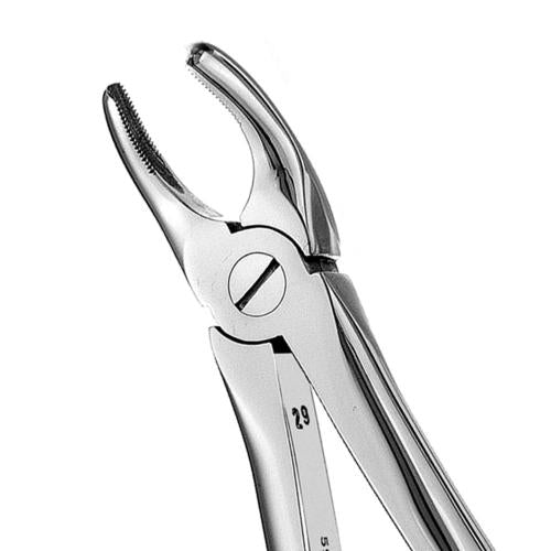 18 Serrated Upper Molars Extraction Forcep