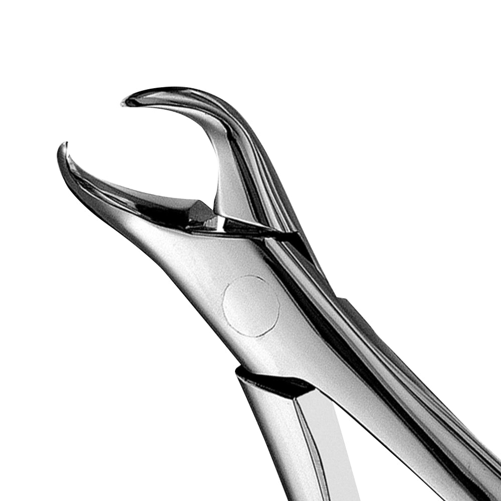 23 Cowhorn Lower Molars Extraction Forceps