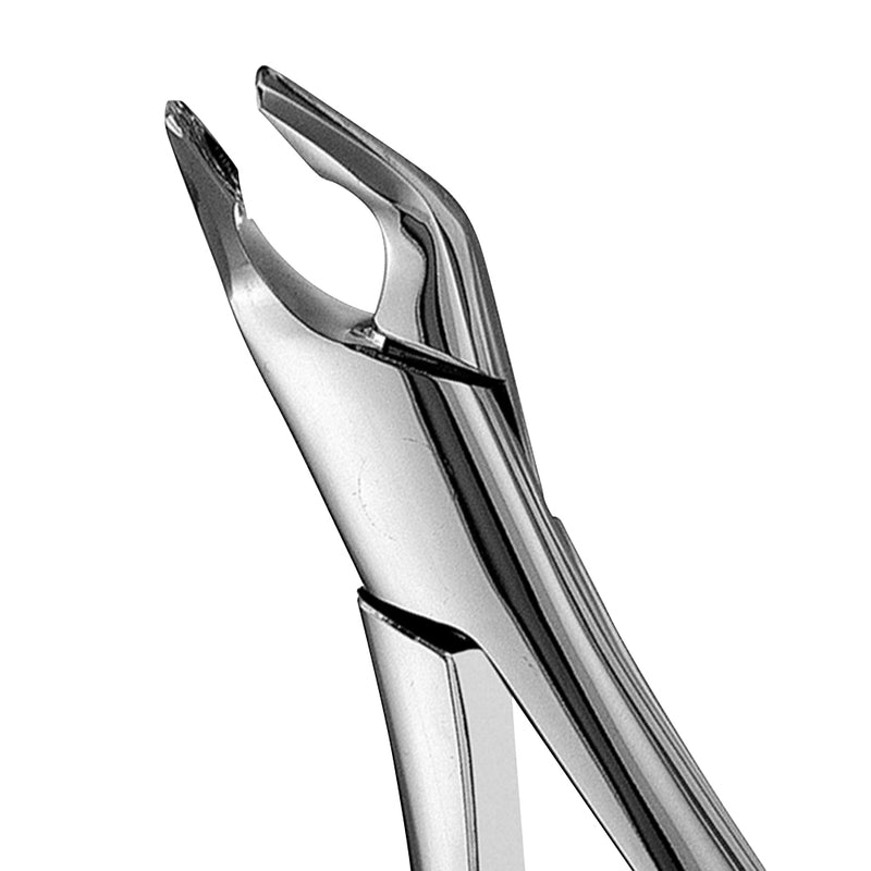 AF151 Apical Lower Universal Extraction Forcep