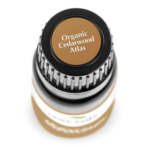 Cedarwood Atlas Organic Essential Oil (10ml) - My Simple Changes