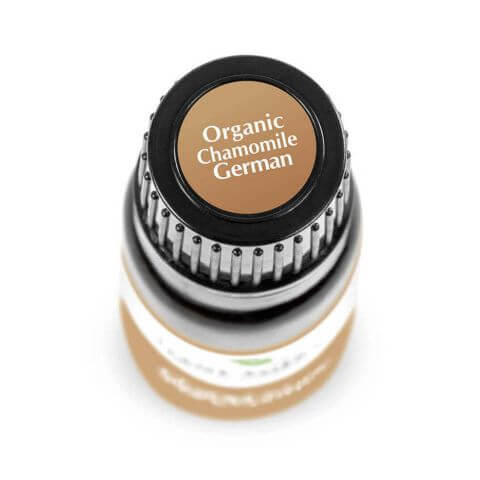 Chamomile German Organic Essential Oil (2.5ml) - My Simple Changes