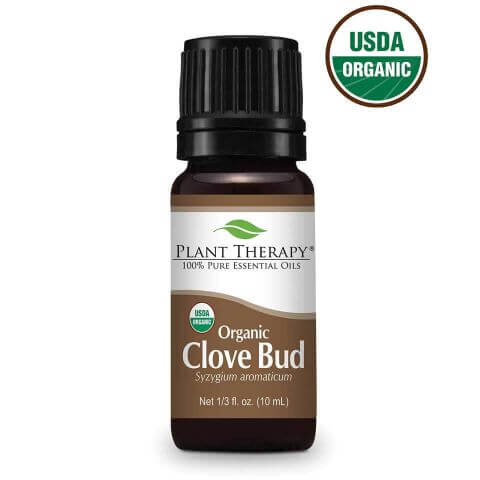 Clove Organic Essential Oil (10 ml) - My Simple Changes