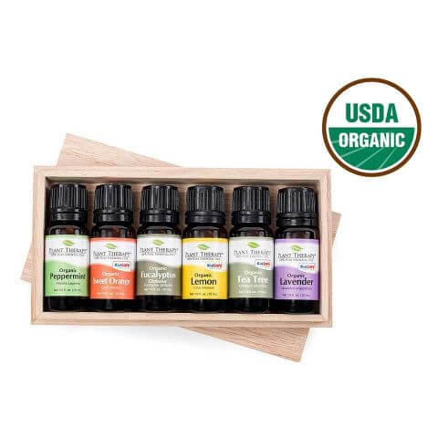 Six Singles Organic Essential Oil Set (10 ml) - My Simple Changes