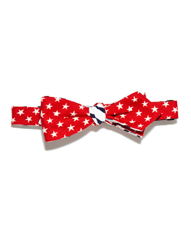 Lincoln Bow Tie