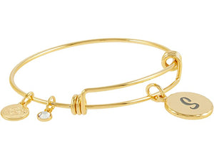 Alex and Ani Halos & Glories, Letter S Bangle