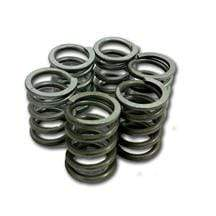 Nihilo Concepts Clutch Springs KTM/Husqvarna 6 Heavy Duty Clutch Springs 50 2013-2020