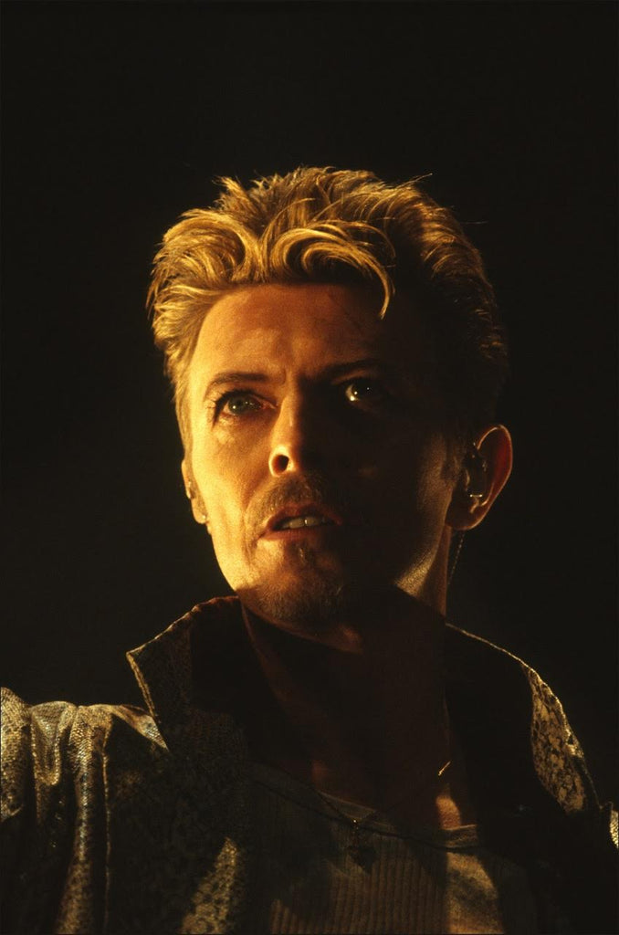 David Bowie - (DB013AT)