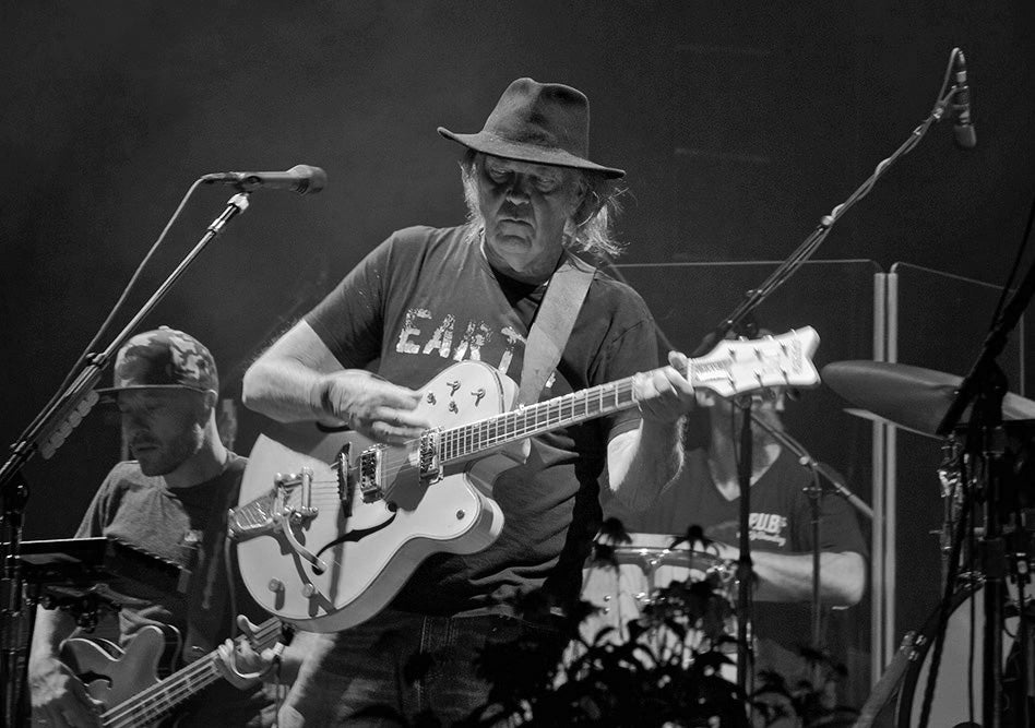 Neil Young by Danny Williams