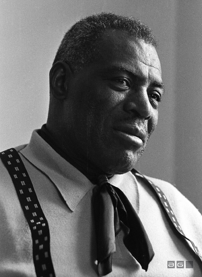 Howlin Wolf by Barrie Wentzell