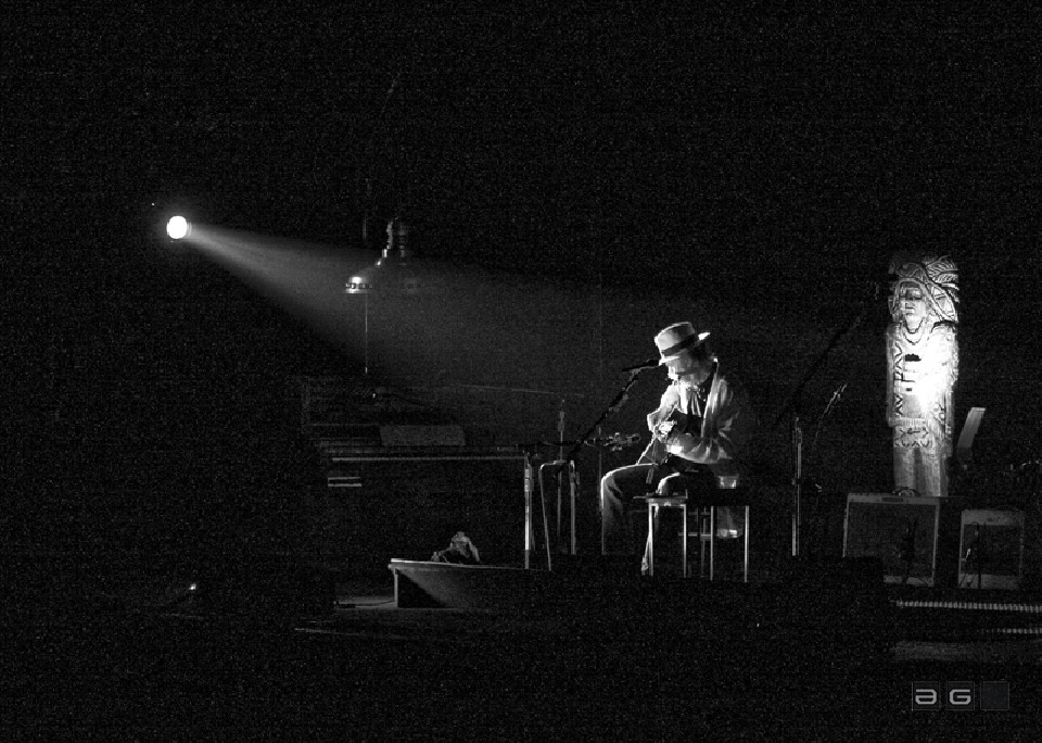 Neil Young by Lucia Remedios