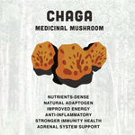 Cha-Cha Chaga Loose Tea Powder 🍄 Medicinal Mushroom Potion