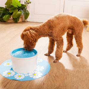 Automatic Pet Drinking dispenser Fountain
