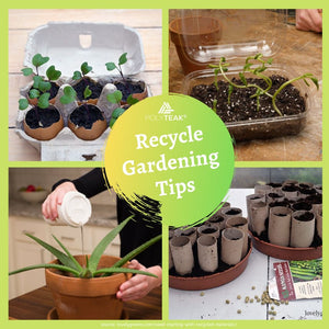 Recycle in your garden