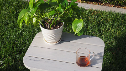 Great Mother's Day Gift Ideas: Outdoor Gardening Table