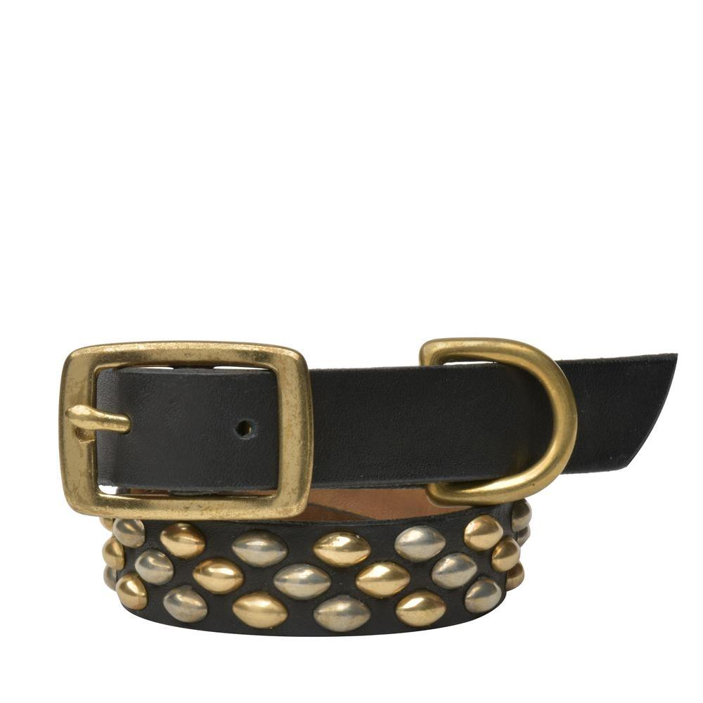 "Handmade black leather 15"" Dog Collar with brass and nickel studs artwork - Calleen Cordero Designs"