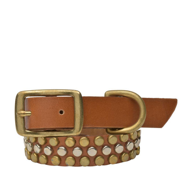 "Handmade tan leather 15"" Dog Collar with brass and nickel studs artwork - Calleen Cordero Designs"