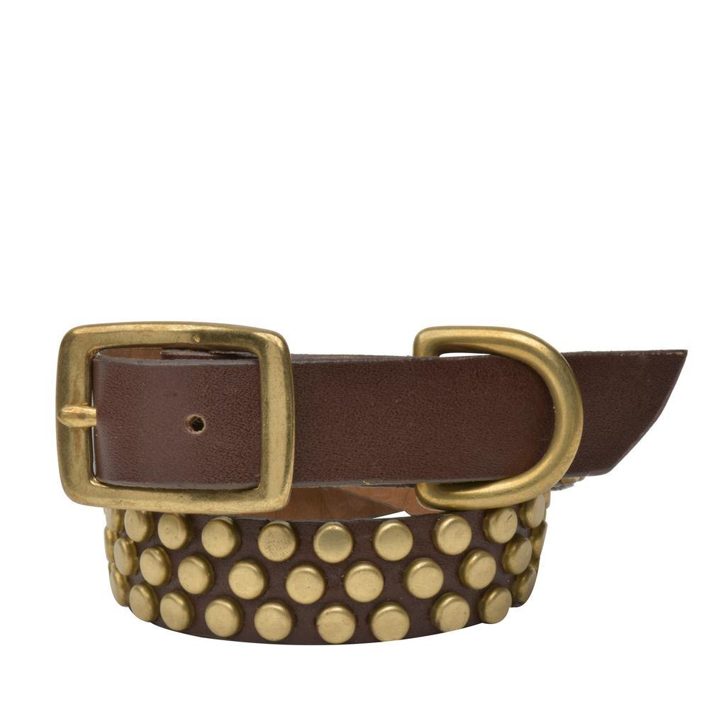 "Handmade dark brown leather 15"" Dog Collar with brass studs artwork - Calleen Cordero Designs"