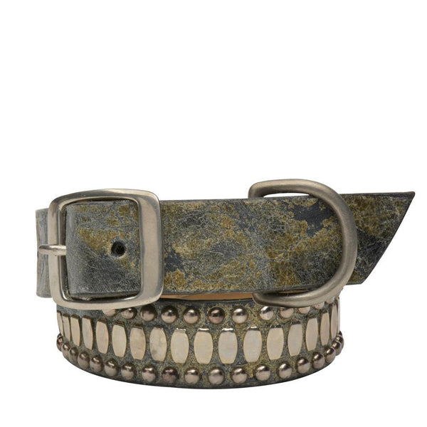 "Concha 19"" Dog Collars"