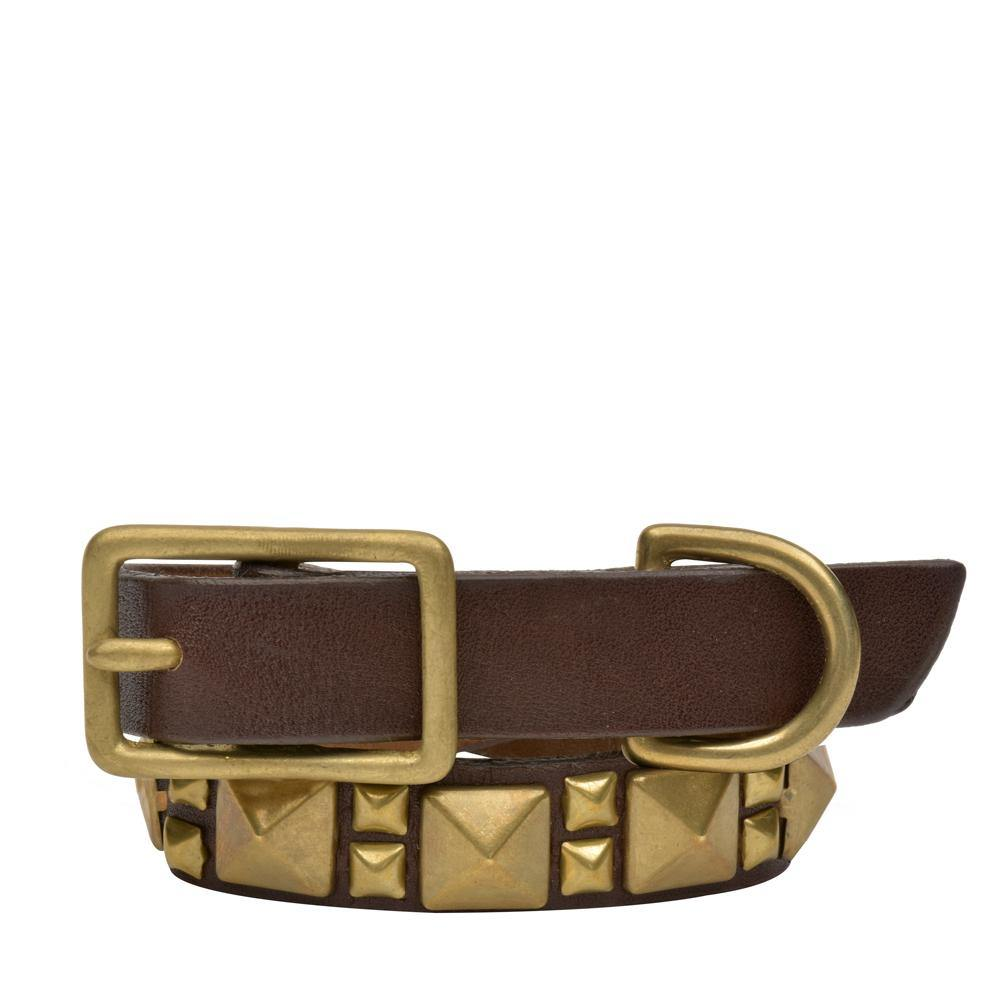 "Handmade dark brown leather 12"" Dog Collar with brass studs artwork - Calleen Cordero Designs"