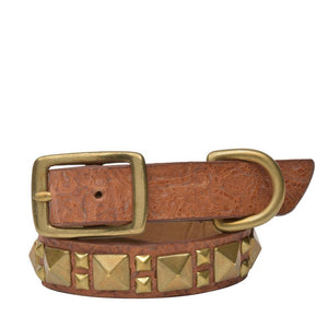 "Handmade tan tooled leather 15"" Dog Collar with brass studs artwork - Calleen Cordero Designs"