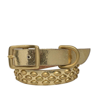 "Handmade gold mirror leather 15"" Dog Collar with brass studs artwork - Calleen Cordero Designs"