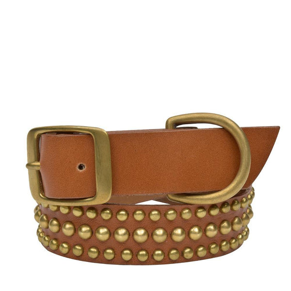 "Handmade tan leather 22"" Dog Collar with brass studs artwork - Calleen Cordero Designs"