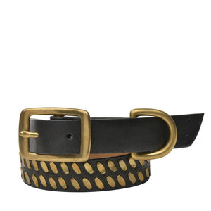 "Handmade black leather 15"" Dog Collar with brass studs artwork - Calleen Cordero Designs"