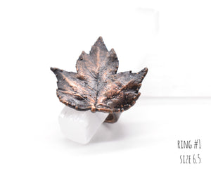 Copper Real Washington Hawthorne Leaf Ring / Electroformed / Ready to Ship