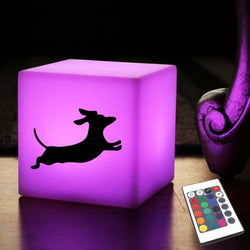 Unique Handcrafted Lightbox, Modern Ambient Rechargeable Night Light for Anniversary, Cube , Dachshund Dog Gift Light