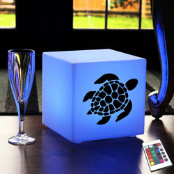 Creative Gift Lamp, Living Room Multi Colour Rechargeable Table Lamp Centrepiece for Decoration, Cube , Sea Turtle Light