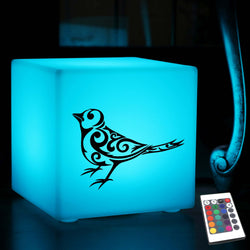 Quirky Lightbox, Outdoor Multi Colour Cordless Table Lamp for Event, Cube , Bird Robin Light