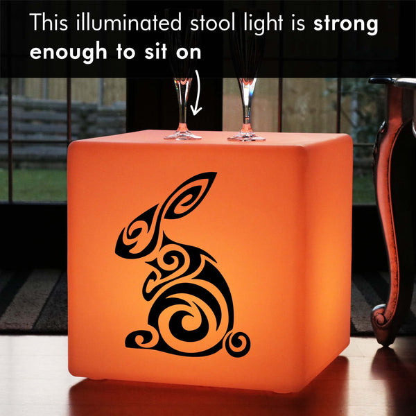 Unique Handmade Gift Light Box, LED Multicolour Cordless LED Stool for Decoration, Cube , Rabbit Light Gift