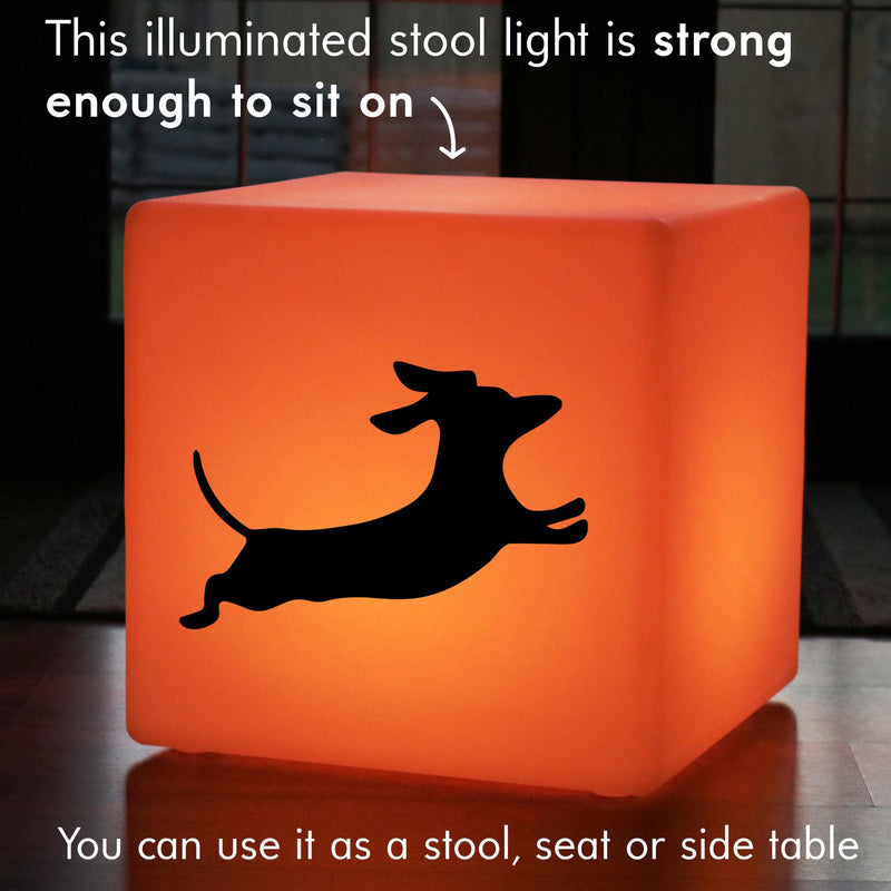 Hand Crafted Lightbox, Decorative Ambient Rechargeable Stool Seat Side Table for Night Club, Cube , Dachshund Dog Gift Lamp