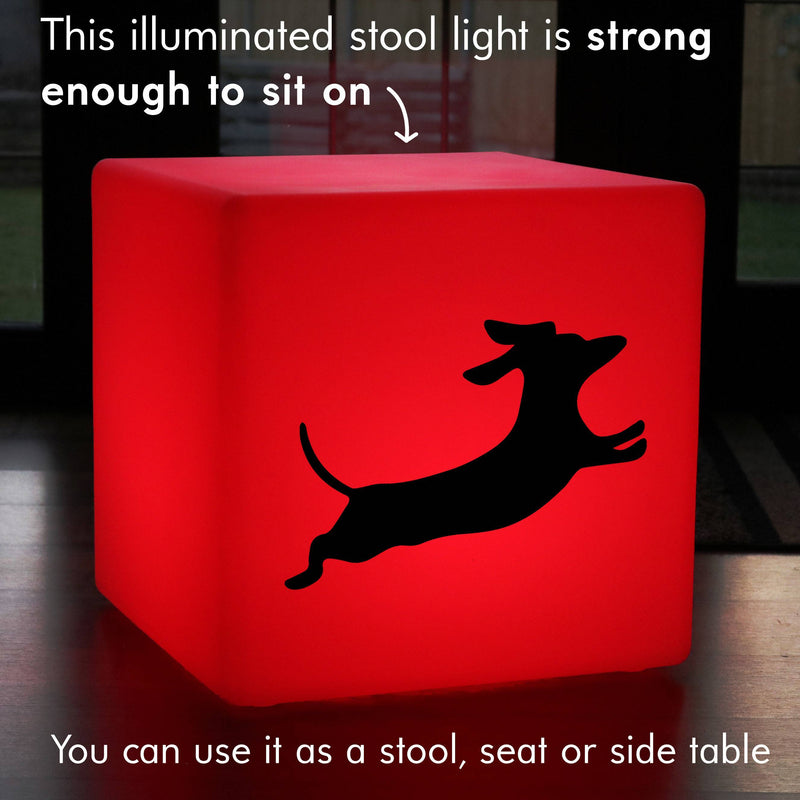 Original Handmade Gift Lamp, Modern Colour Changing Wireless Stool Seat Furniture for Nightclub, Cube , Dachshund Dog Lamp