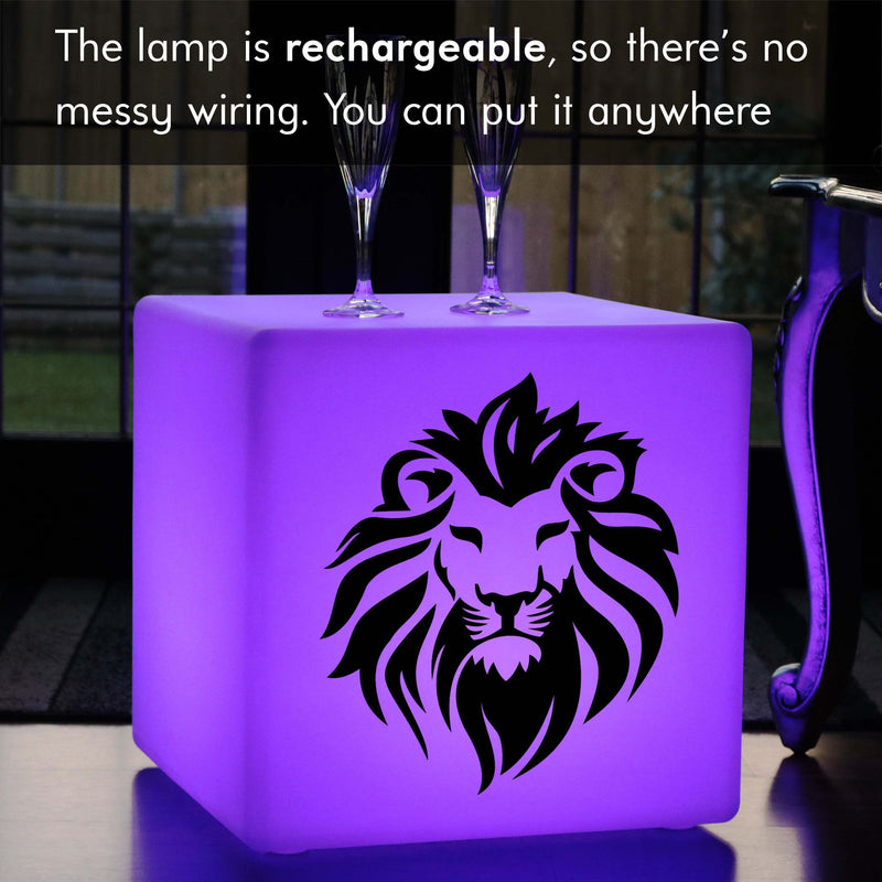 Creative Handmade Light Box, LED Multi-Colour Cordless LED Seat for Party, Cube , Lion Lamp