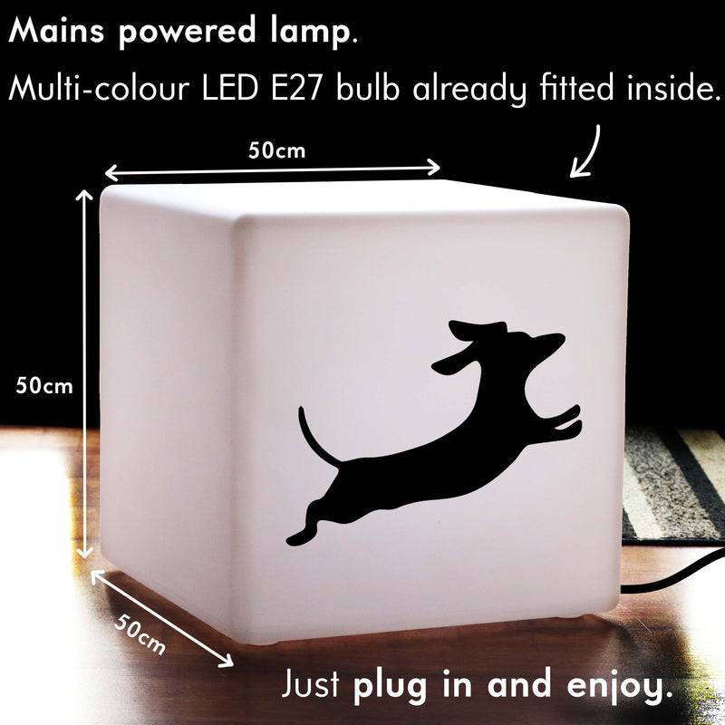 Quirky Thoughtful Gift Light, LED Dimmable Light Up Seat for Hotel, Cube , Mains Powered, Dachshund Dog Light