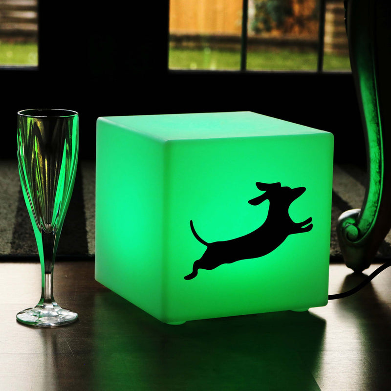 Original Handcrafted Thoughtful Gift Light, Contemporary Ambient Table Bedside Lamp for Party, Cube , Mains Powered, Dachshund Dog Gift Light