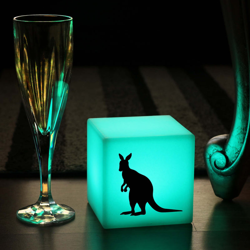 Original Handcrafted Gift Light for Her, Living Room Colour Changing Cordless Bedside Lamp for Hotel, Cube , Kangaroo Lamp