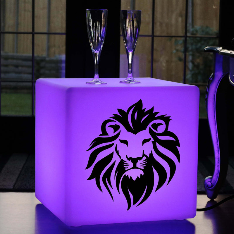Hand Made Light Gift for Her, Decorative Multi-Colour Light Up Seat for Anniversary, Cube , Mains Powered, Lion Head Light